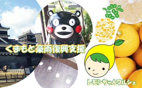 NPO法人ローカル・パイン・トーキョー くまもと 熊本県 復興マルシェ寄付ページ