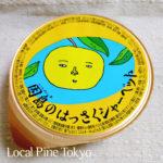 NPO法人ローカル・パイン・トーキョー マルシェ 広島県 美味しい レモン 因島はっさくシャーベット