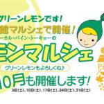 NPO法人ローカル・パイン・トーキョー マルシェ 美味しい レモン 物産品